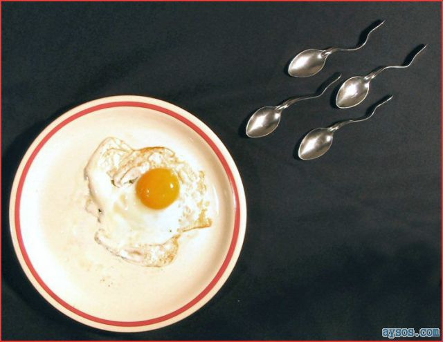 Funny picture sperm and the egg