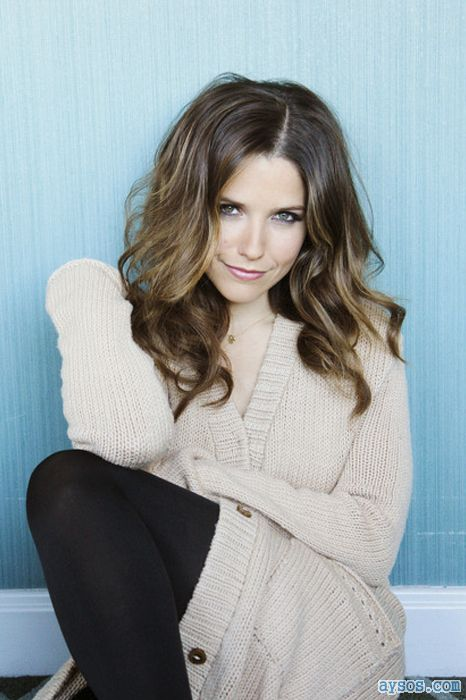 Beautiful Sophia Bush in stockings