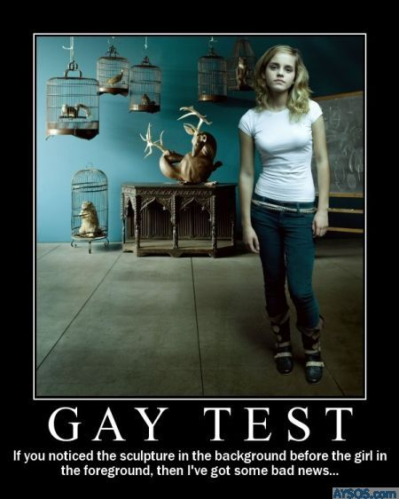The Gay Test