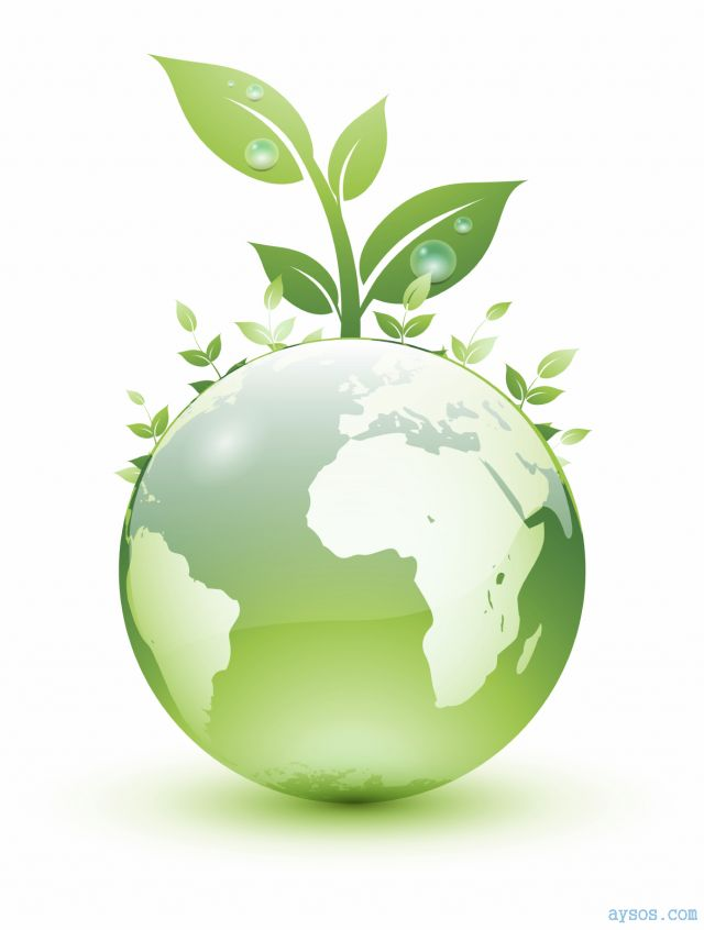 green products a need of hour Environmentally preferable products find green products and services on statewide contracts epp program overview what you need to know.