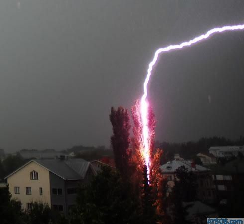 Crazy lightning strikes tree