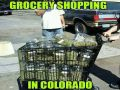Grocery Shopping in Colorado