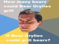 Funny Bear Grylls